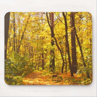 Beautiful Landscape - Road In Autumn Forest Mouse Pad