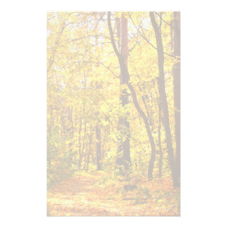 Beautiful Landscape - Road In Autumn Forest Personalized Stationery