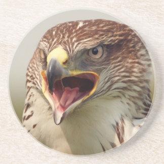 Beautiful Lanner Falcon Coaster