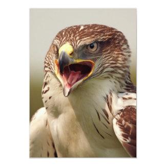 Beautiful Lanner Falcon Invitation