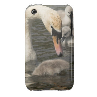 Beautiful Lanner Falcon iPhone 3 Case