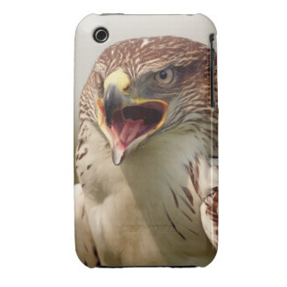 Beautiful Lanner Falcon iPhone 3G/3GS Case