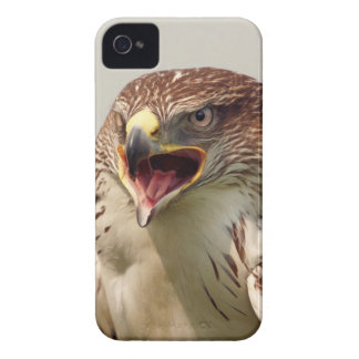 Beautiful Lanner Falcon iPhone 4/4S ID Case