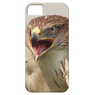 Beautiful Lanner Falcon iPhone 5 ID Case