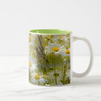 Beautiful Large Daisies Mug