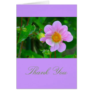 BEAUTIFUL LAVENDER-PINK ANEMONE CARD