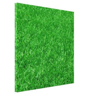 Beautiful Lawn Canvas Print
