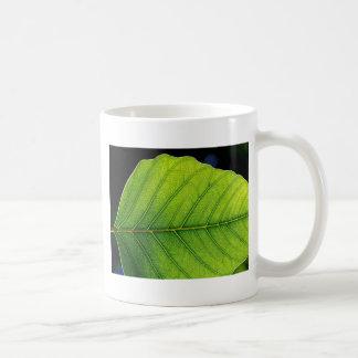 Beautiful Leaf Close Up Basic White Mug