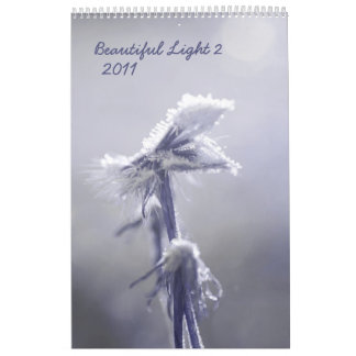 Beautiful light 2 - 2011 calendar