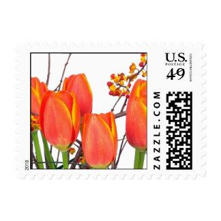 Beautiful Light Orange Tulip Arrangement  Postage