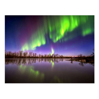 Beautiful Lights Postcard