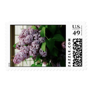 beautiful lilac bouquet postage