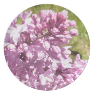 Beautiful lilac Plate