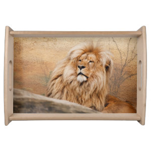 Beautiful Lion Serving Tray