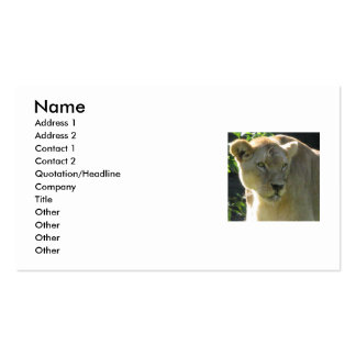 Beautiful Lioness Business Card
