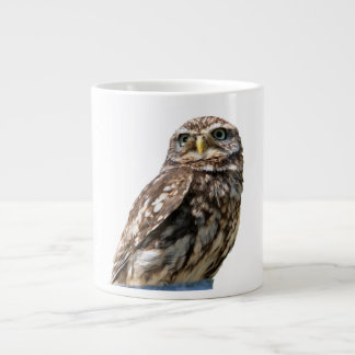 Beautiful little owl bird photo bone jumbo mug