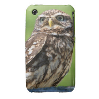 Beautiful little owl photo iphone 3G case mate