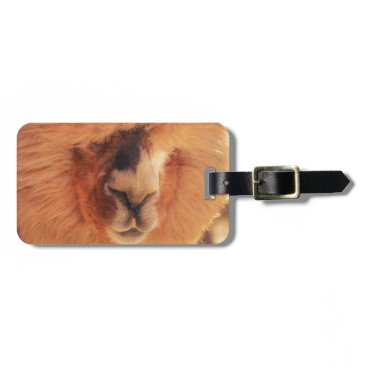 Beautiful Llama Alpaca Bag Tag