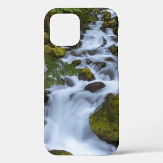 Beautiful Long Exposure of a Mountain Stream iPhone 12 Case
