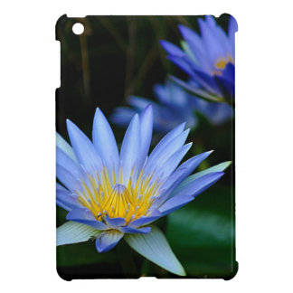 Beautiful lotus flowers and meaning case for the iPad mini