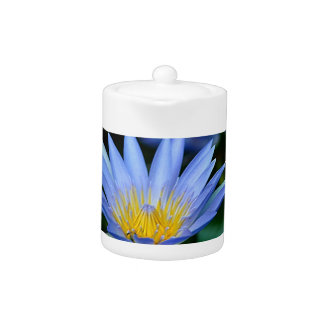 Beautiful lotus flowers and meaning teapot