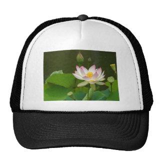 Beautiful Lotus Cap