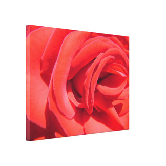 beautiful love red rose picture wrapped canvas. canvas print