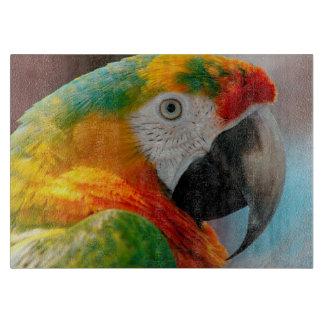 Beautiful Macaw Cutting Board