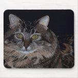 Beautiful Maine Coon Cat Mousepad