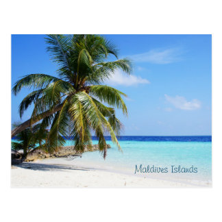 Beautiful Maldives Islands Postcard