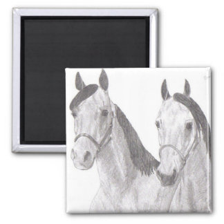 Beautiful Mares Horse Drawings Magnet