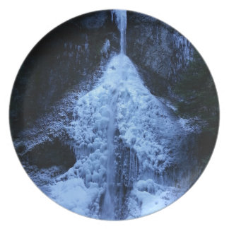 Beautiful Marymere Falls Olympic National Park Melamine Plate