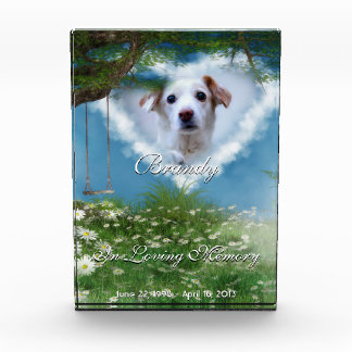 Beautiful Meadow Pet Photo Personalized Memorial Acrylic Award