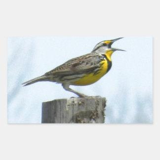 Beautiful meadowlark with yellow and gray markings rectangular sticker