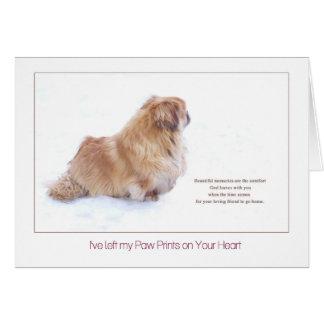 Beautiful Memories Pekingese dog sympathy Card