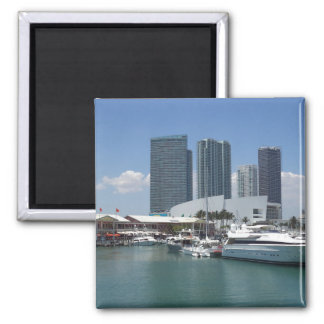 Beautiful Miami Magnet