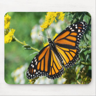 Beautiful Monarch Butterfly Mouse Pad