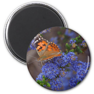 Beautiful Monarch Butterfly Photo 2 Inch Round Magnet