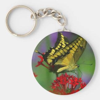Beautiful Monarch Butterfly Photo Basic Round Button Keychain