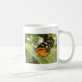 Beautiful Monarch Butterfly Photo Coffee Mugs