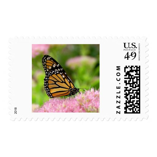 Beautiful Monarch Butterfly Stamps