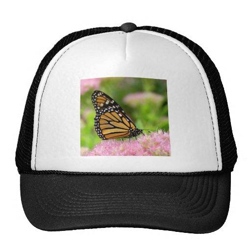 Beautiful Monarch Butterfly Trucker Hat