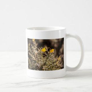 beautiful moorland gorse flower coffee mug