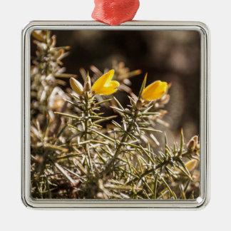 beautiful moorland gorse flower square metal christmas ornament