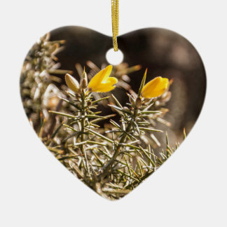 beautiful moorland gorse flower Double-Sided heart ceramic christmas ornament