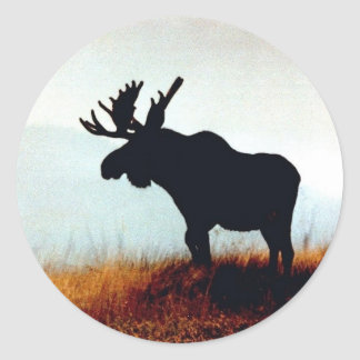 Beautiful Moose Classic Round Sticker