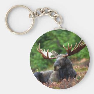 Beautiful moose with big antlers keychain
