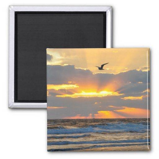 Beautiful Morning Beach Sunrise Scenery Magnet