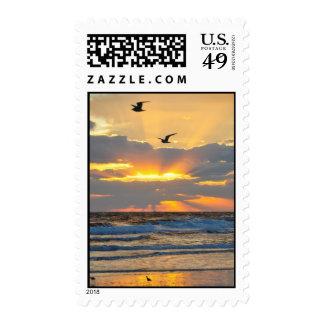 Beautiful Morning Beach Sunrise Scenery Stamps