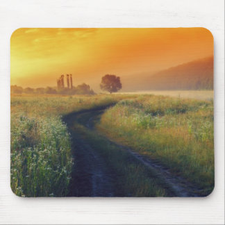 Beautiful morning landscape with the river mouse pad